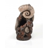 biOrb dekorace trilobit