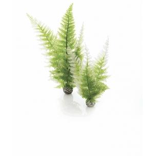 biOrb rostliny zimní barvy