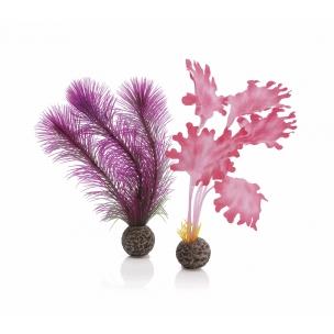 biOrb rostliny růžové malé