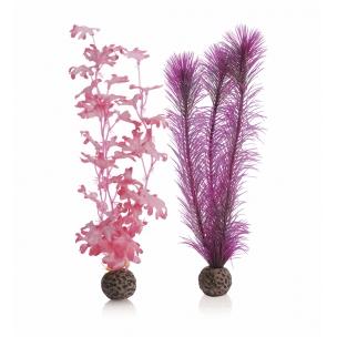biOrb rostliny růžové střední
